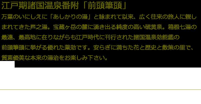 箱根芦之湯